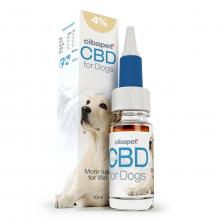 CBD Olaj 4% kutyáknak