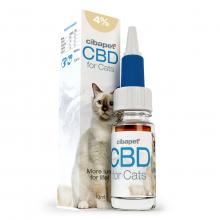CBD Olaj 4% macskáknak